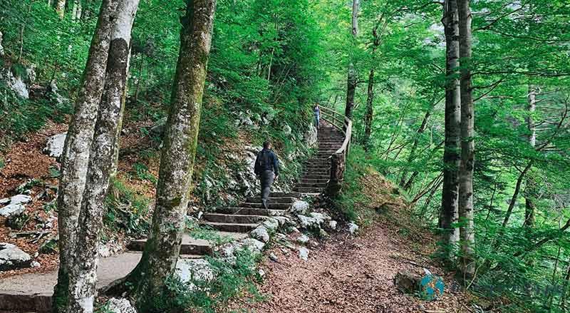 Escaleras-cascada-savica